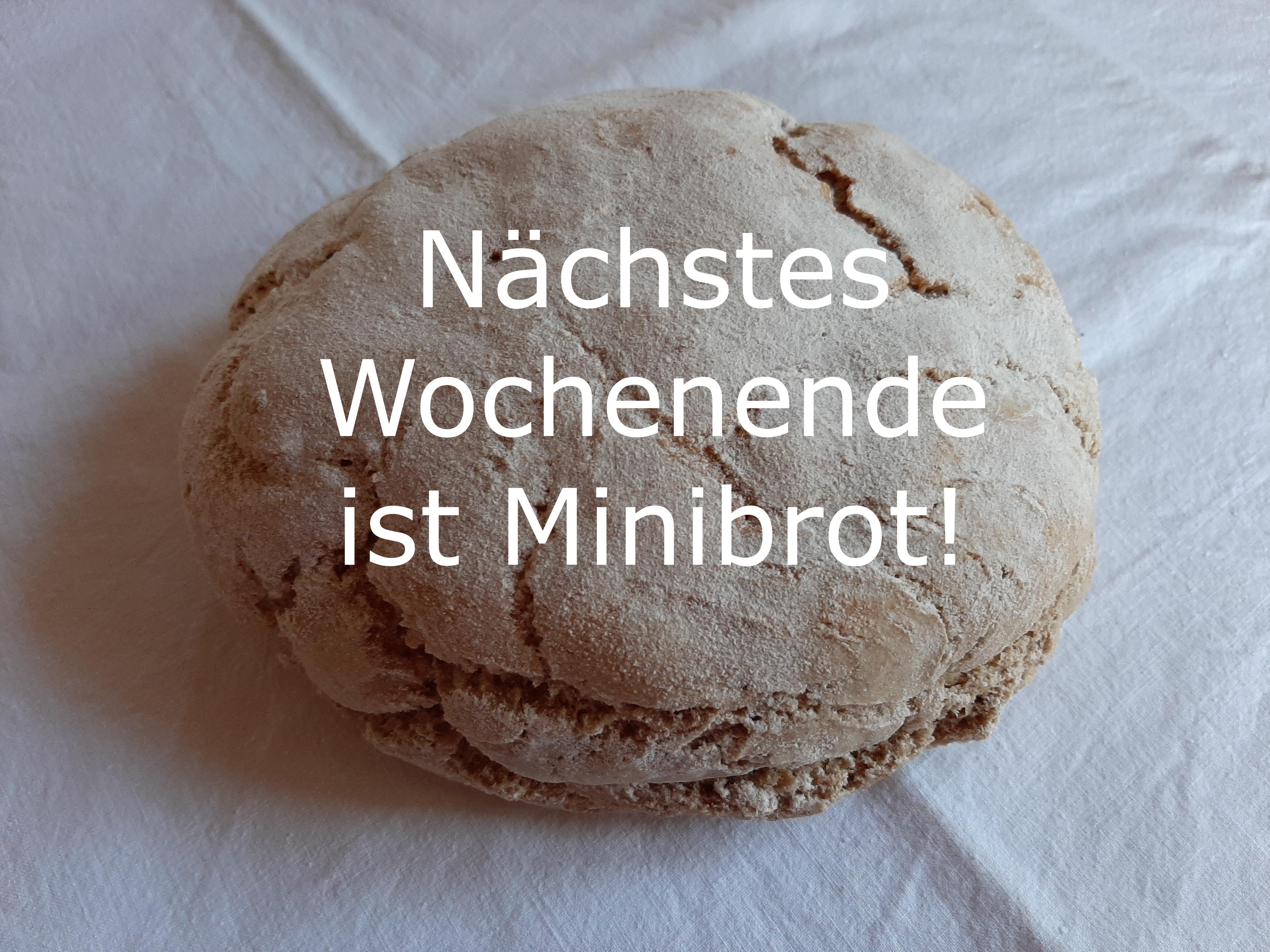 Minibrot